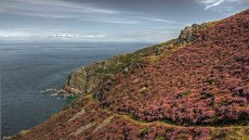 Coastal Path near Heddon Mouth. By Dave Rowlatt http://www.davidjrowlattphotography.com/