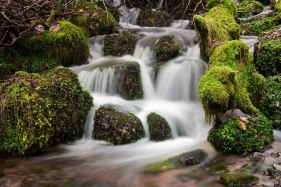 Mossy falls in Horner Woods. By Dave Rowlatt http://www.davidjrowlattphotography.com/
