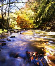 River Barle in Autum. By Rob Hatton http://www.roberthattonphotography.co.uk/