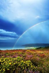 Rainbow over Bossington Bay (Robert Hatton)