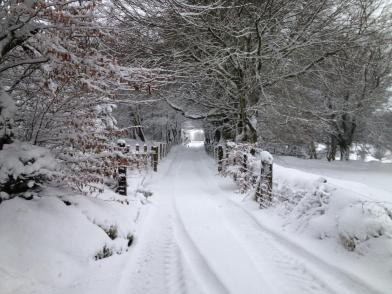 310 Culbone Snow