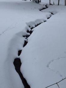 311 Culbone Snow