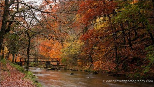 Autumn colours at Ash Bridge. By Dave Rowlatt. http://www.davidjrowlattphotography.com/