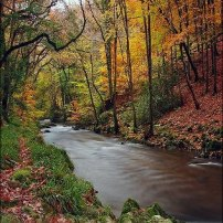 Autumn along the East Lyn by Dave Rowlatt http://www.davidjrowlattphotography.com/