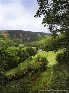 County Gate - Where Somerset meets Devon on Exmoor by Dave Rowlatt http://www.davidjrowlattphotography.com/