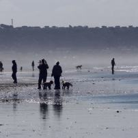 Dog Walking on Saunton Sands by Peter French http://www.flyingtigers.co.uk/