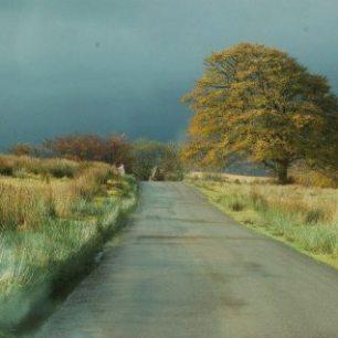 Road to Tarr Steps by Melanie Maddock (photo)