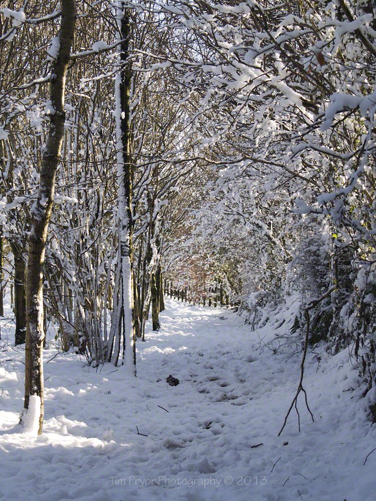 Last Week S Snow Exmoor 4 All