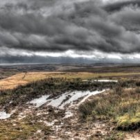 Wild and Wet Exmoor (Peter French)