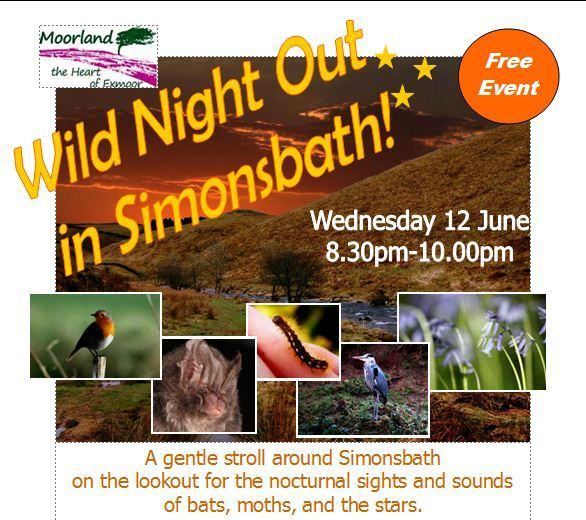 205 Wild night out in Simonsbath