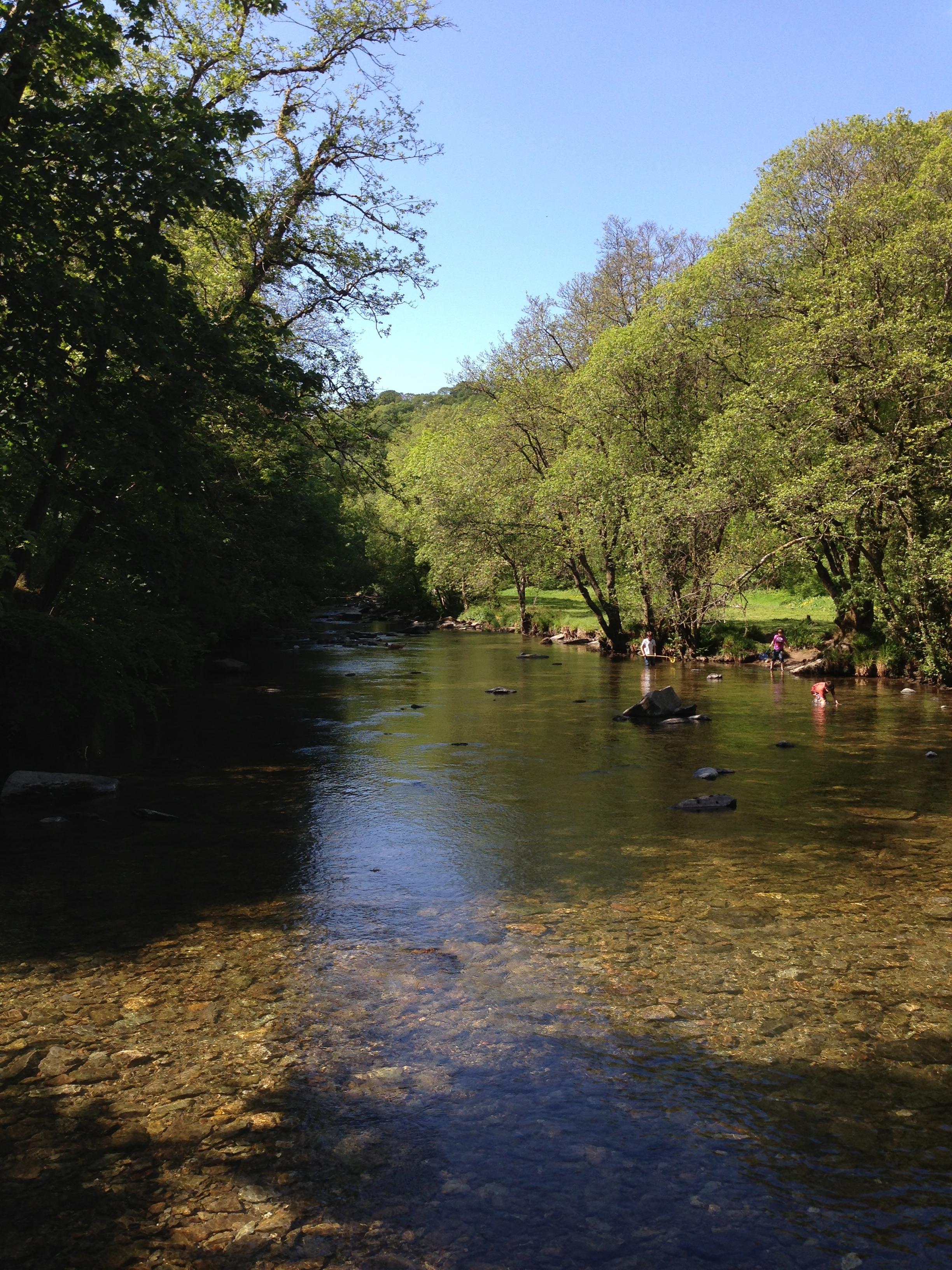 The River Barle at Tarr Steps