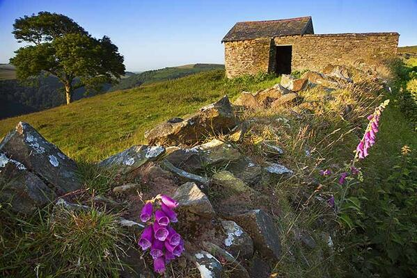 Windy Hill near Countisbury weekend. Photo by Rob Hatton
