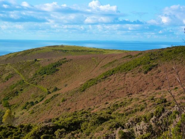 Minehead Hill
