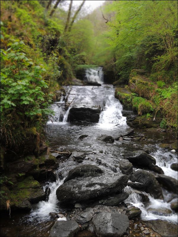 The Lyn at Watersmeet. Photo by Don Foden.