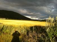 Exmoor Clouds, part 2 1