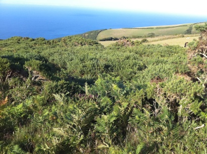 Foreland Point 3
