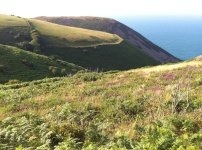 Foreland Point 4