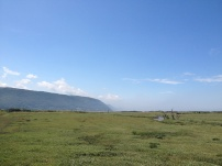 A Walk Through The West Porlock Marshes 1