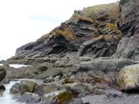 On the edge of the beach 2