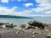 On the edge of the beach 3