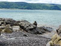 On the edge of the beach 4