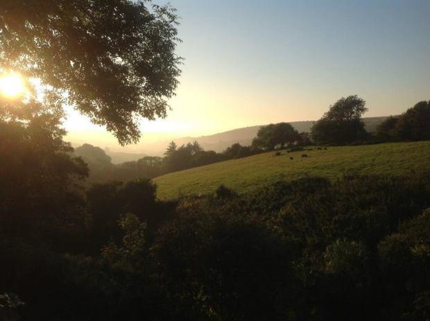 104 Experience Exmoor Golden Exmoor