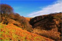307 Twitchen Helen Ash Christmas Day on Exmoor