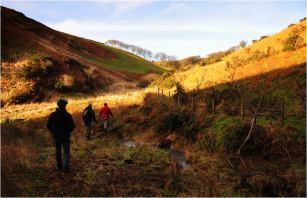 308 Twitchen Helen Ash Christmas Day on Exmoor
