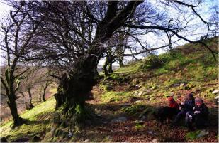 309 Twitchen Helen Ash Christmas Day on Exmoor