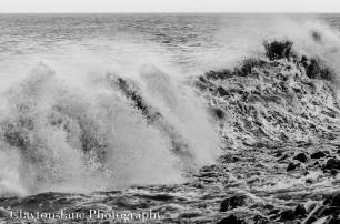 105 Clayton Jane Waves