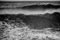 109 Clayton Jane Waves