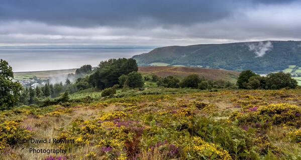 Rising mist over Porlock. Photo by Dave Rowlatt