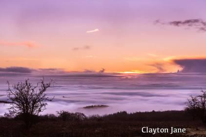 Clayton Jane 1 JAN