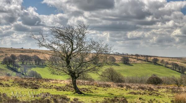104 Mike Watson View from Drayton Knap