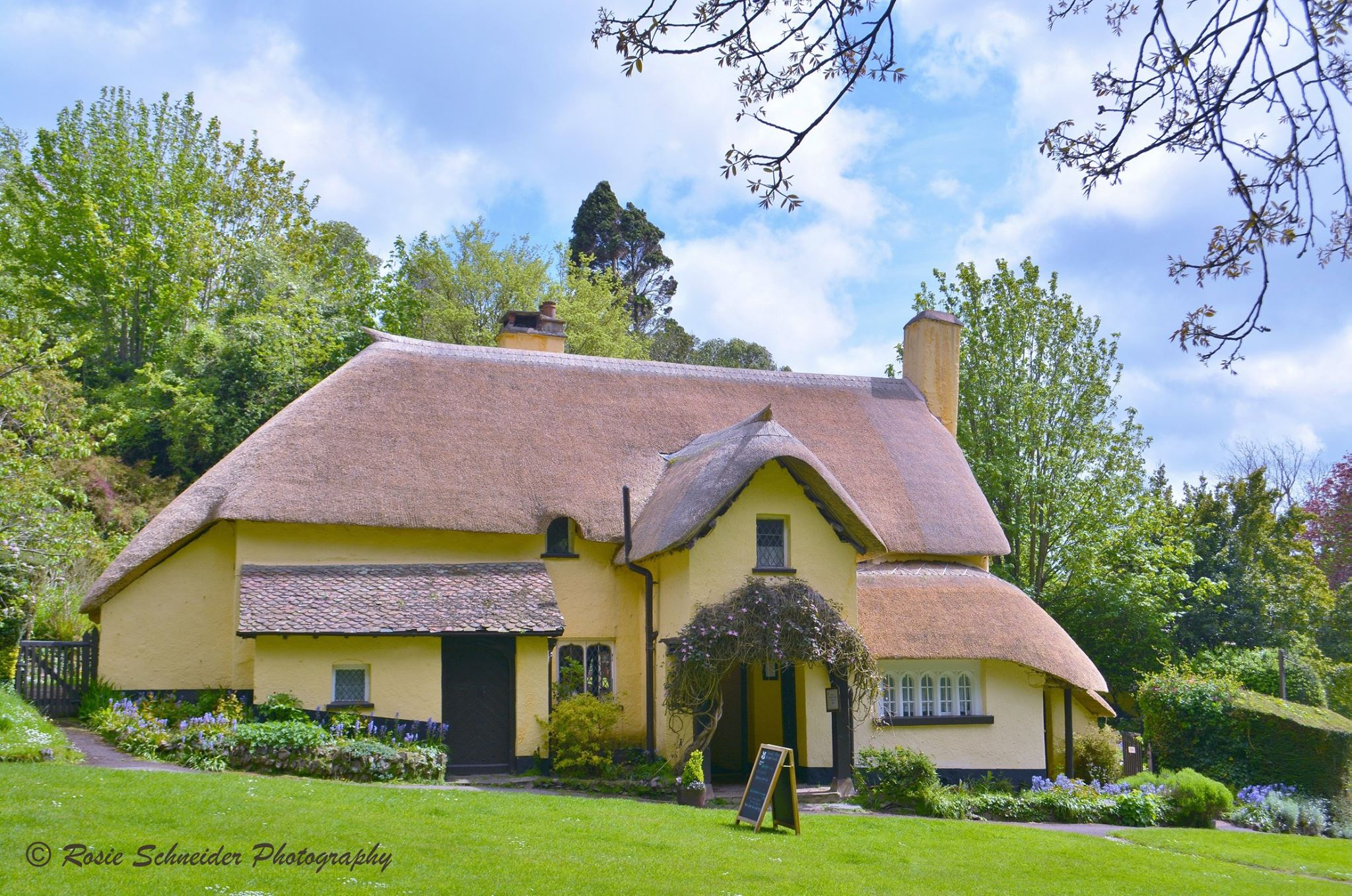 National Trust Selworthy Tearoom. Photo by Rosie Schneider