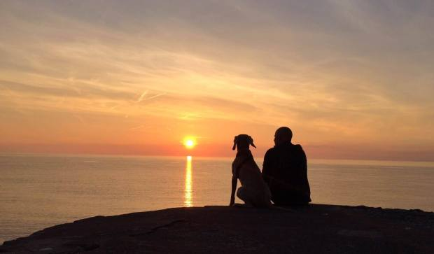 Man and his best friend.... watching the sun go down at Bossington Beach on 17 June 2014. Photo by Rach Banham