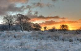 405 Mike Watson snow