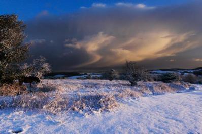 407 Mike Watson snow