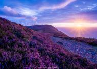 0813-003 John Spurr Sunset at Holdstone Down