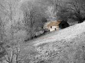 fred barrow 2 march