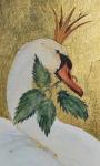 Wild Swan by Jackie Morries