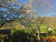 West Lynch Garden