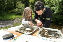 Looking at findings from stream dipping