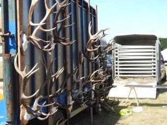 101 Gary Lancelles - Cast stag horns at Porlock Show
