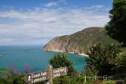 105 Julia Amies-Green Absolutely stunning day on Saturday along the South West Coast Path at Countisbury.