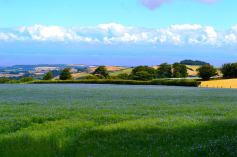 106 Michael Edwards - Looking towards Wales from Raleighs Cross this morning