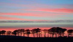0308-richard-williams-simonsbath-at-twilight