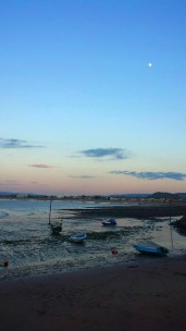 1008-pauly-allen-low-tide-at-minehead-harbour