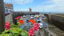1208-david-reynolds-lynmouth-harbour-in-its-summer-glory