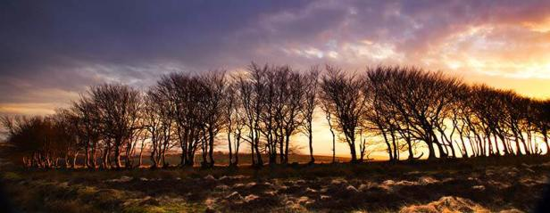 1208-robert-hatton-sunset-on-exmoor